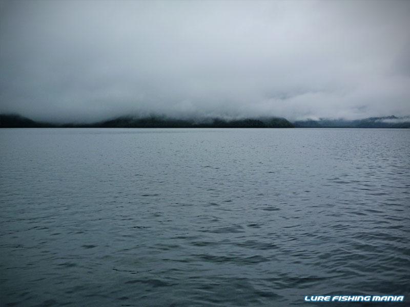 雨が降って霧がかかり、気温も低くない...最高の雰囲気