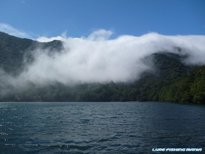 南風が雲?を運んできているようで、この後濃霧に