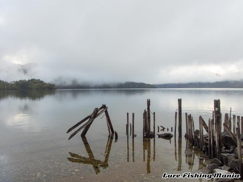 静かな湖畔の朝