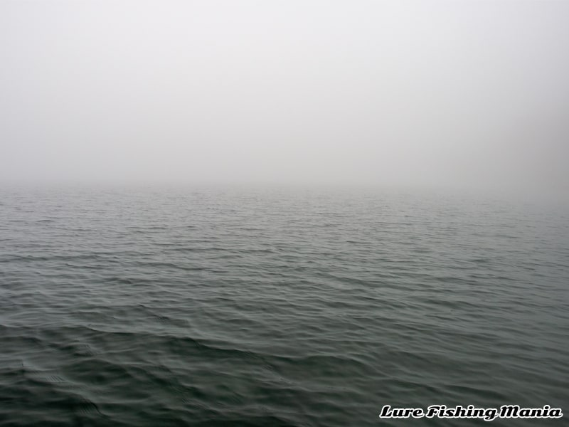 相変わらずの濃霧