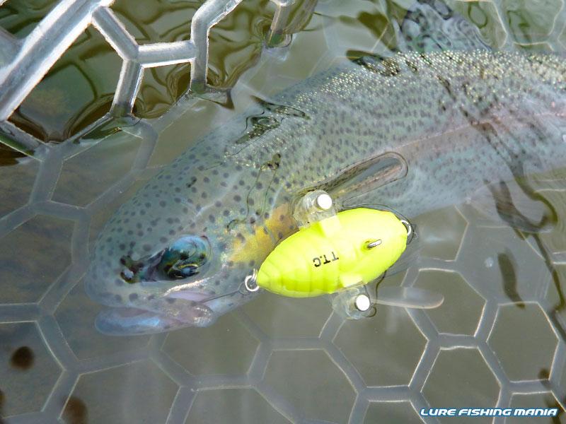 FISH・ON!鹿留 2013年第1戦目